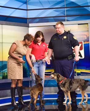 Bone A Fide Dog Trainer Patricia Hall on set of Fox News